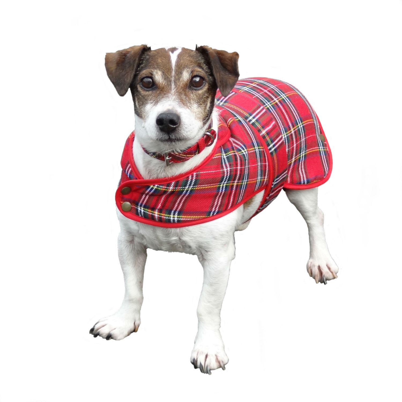 Tartan Dog Coats